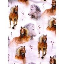 Single Jersey Kinderstoff Pferd Breite 155cm ab 50 cm