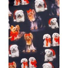 Jersey Stoff Kinderstoff Digitaldruck Hunde Weihnachten ab 50 cm