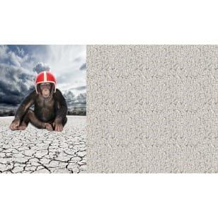 Panel Jersey Stoff Affe Kinderstoff 0,65m x 1,50m kaufen